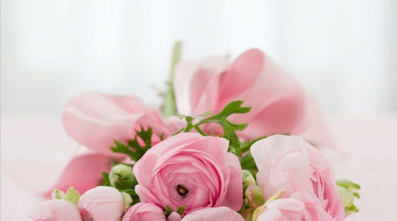 Стабилизированные цветы – цветы, которые никогда не увянут